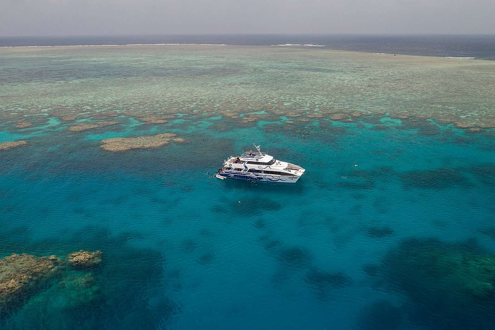 Image for Divers Den - Reef Quest Cruise