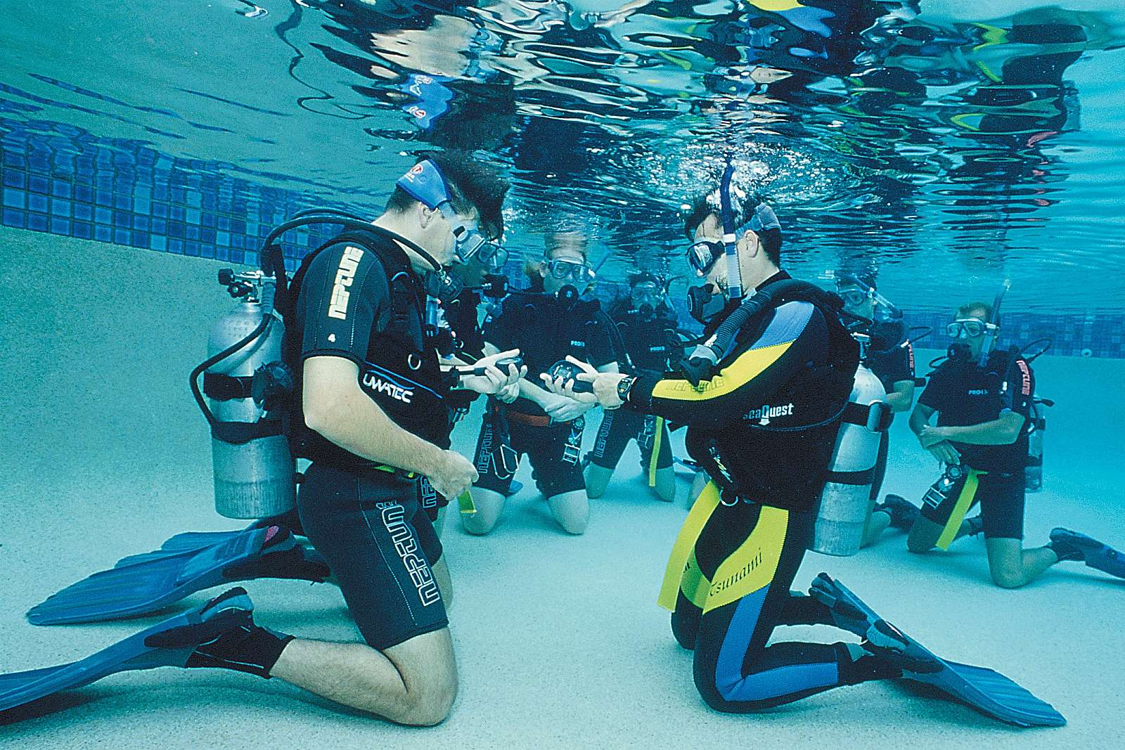 Feature image for PADI - 4 Day Learn to Dive Course