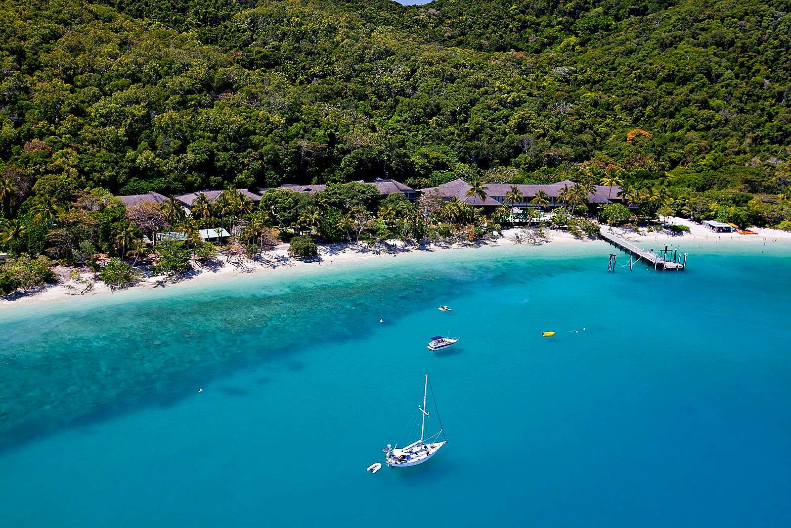 Feature image for 08:00AM Departure - Same Day Return Fitzroy Island Ferry transfers (Full Day 5:00PM Return)